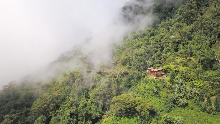 Cloud Forest Lodge in Sierra Nevada de Santa Marta
