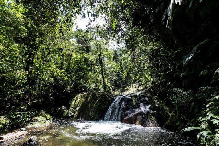 Waterfall in Sierra Nevada de Santa Marta, Colombia