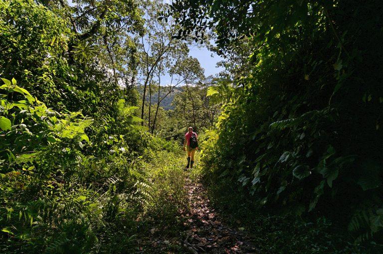 Trekking in Sierra Nevada de Santa Marta